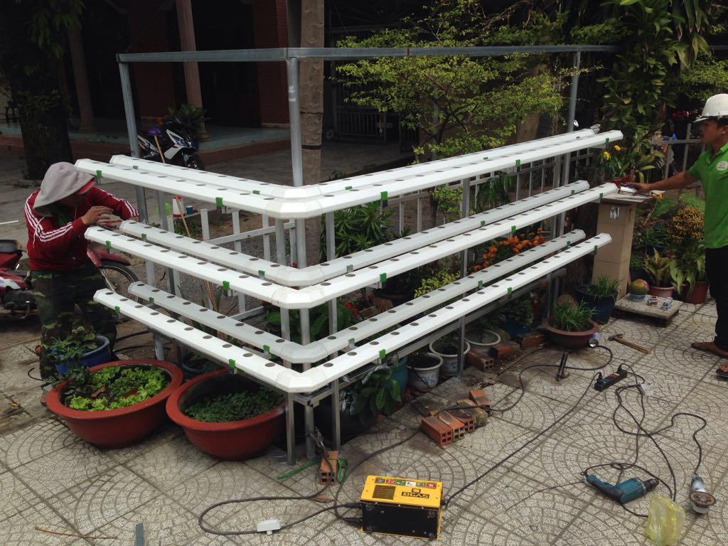 lắp đặt hệ thống trồng rau thủy canh