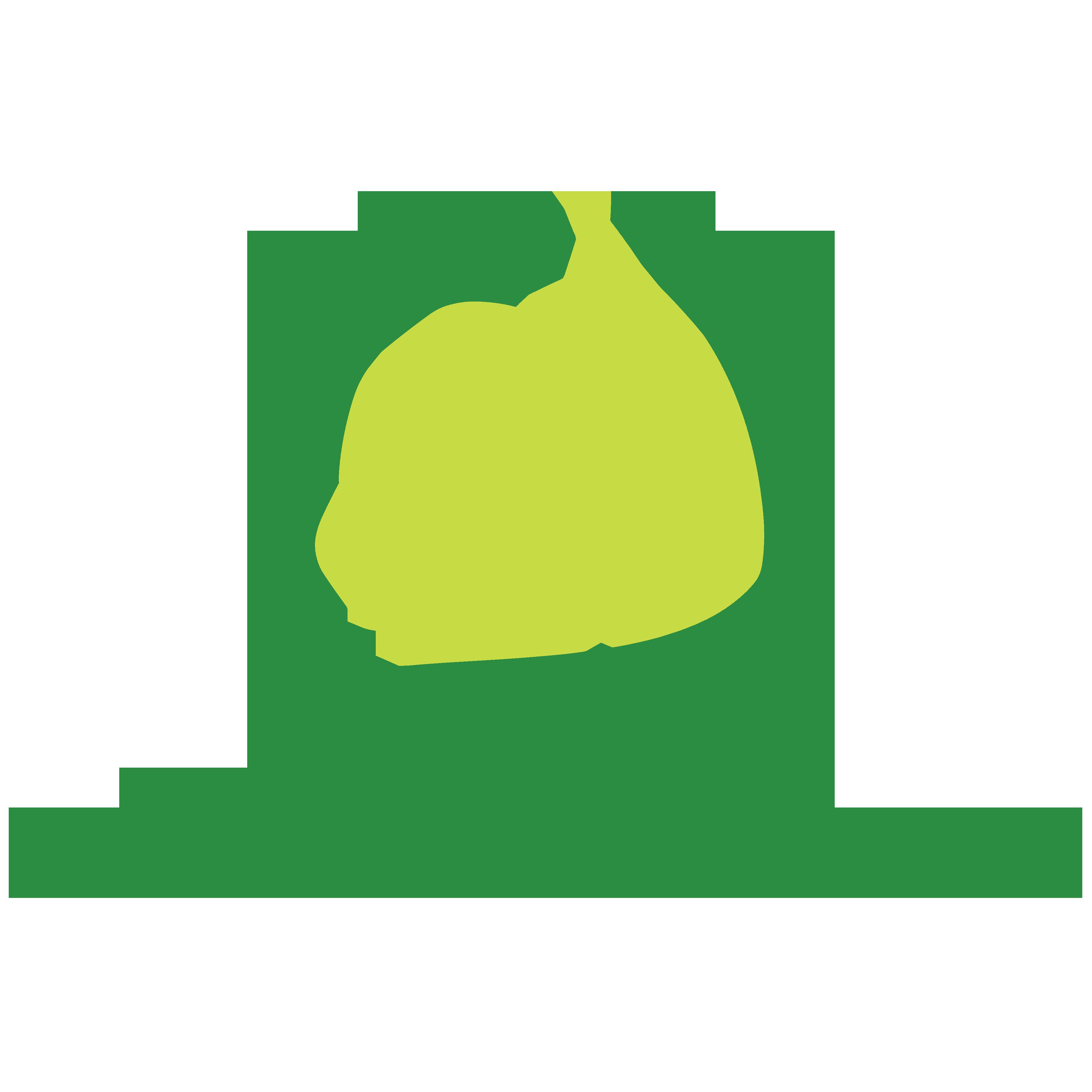 Thủy Canh Miền Nam